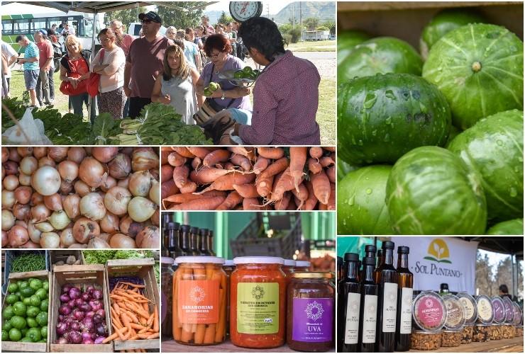 """Con productos frescos, de calidad y a precios accesibles, la feria itinerante de """"Sol Puntano"""" vuelve al ruedo"""
