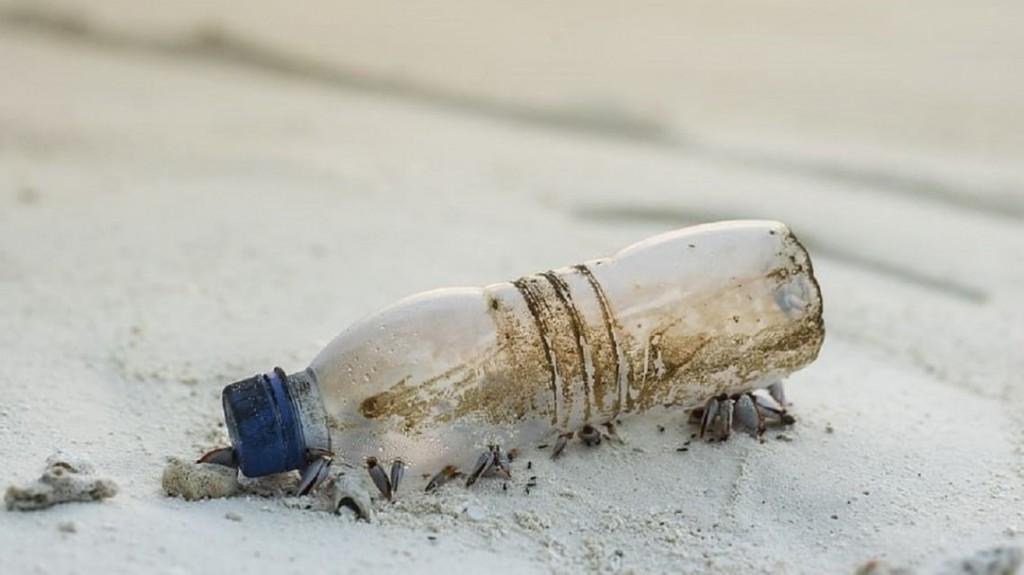 El conmovedor mensaje dentro de una botella tirada al mar que recorrió 11.000 kilómetros en 16 años
