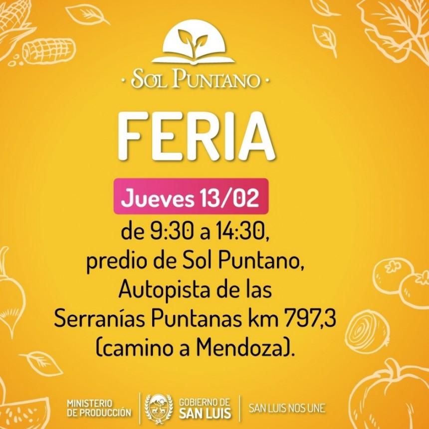 """""""Sol Puntano"""" vuelve a ofrecer este jueves productos frescos, de calidad y a buen precio"""