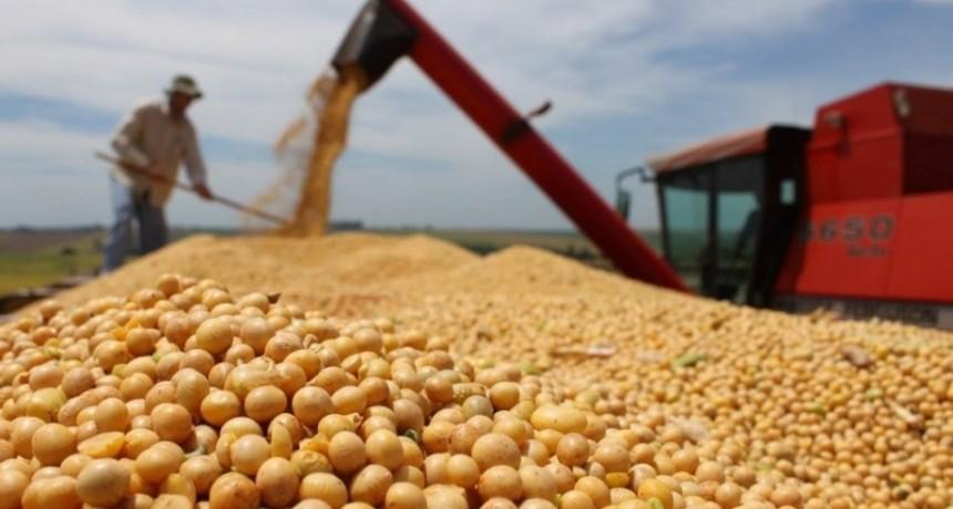 El Gobierno define suba de retenciones a la soja