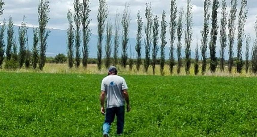 San Luis Agua abrió el plazo para presentar intenciones de siembra y censo de cultivo otoño-invernal 2020