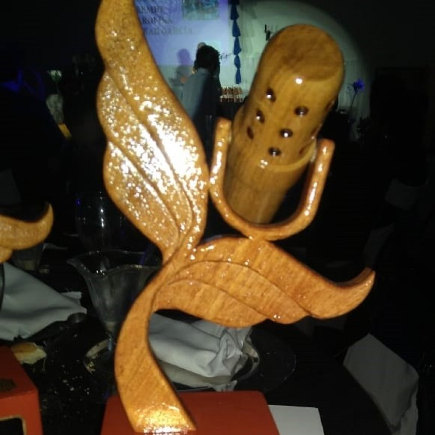 Premios Tobar García a la radio puntana