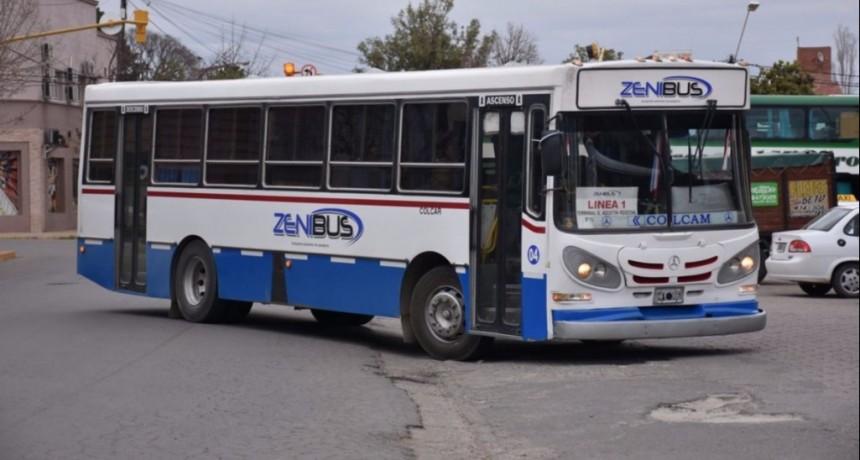 Merlo: nuevo conflicto de Zenibus
