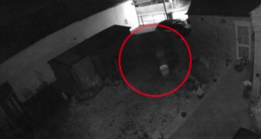 Terror: cámara de seguridad grabó un fantasma en el jardín de su casa