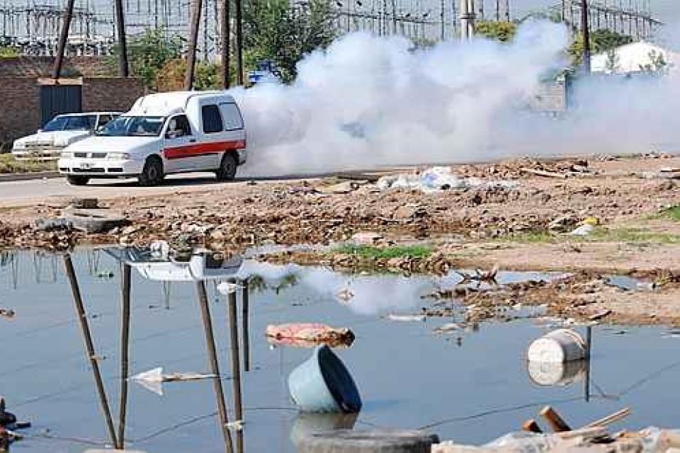 Dengue: la epidemia continúa su expansión en Argentina