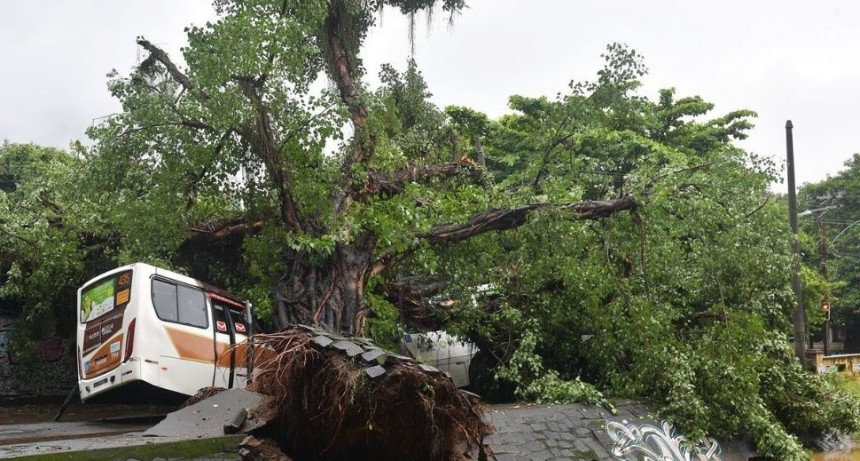 Trágico temporal en Río de Janeiro: 10 muertos y daños materiales