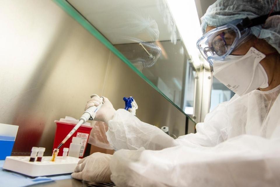 Coronavirus en Argentina: lograron descifrar el genoma del Covid-19 local