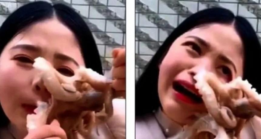 Bloguera china intentó comerse vivo a un pulpo y le pasó algo horrible