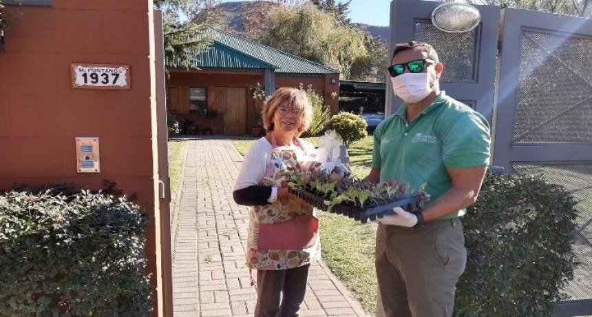 En la primera semana, Sol Puntano vendió más de 250 bandejas de plantines