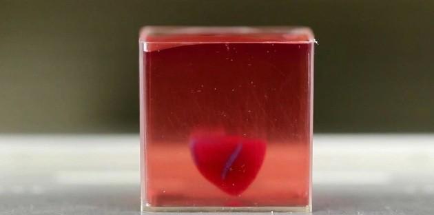 El primer corazón fabricado en impresora 3D y la revolución en el trasplante de órganos que se prepara en Israel