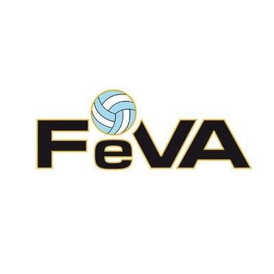 La Federación Sanluiseña con 3 equipos para el Nacional de Voley
