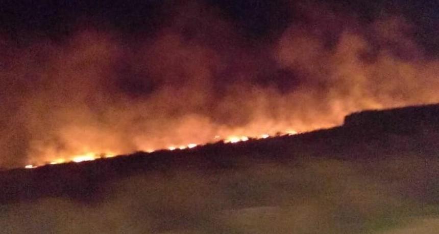 Bomberos sofocaron un incendio forestal que se desarrollo en el barrio Serranías Puntanas