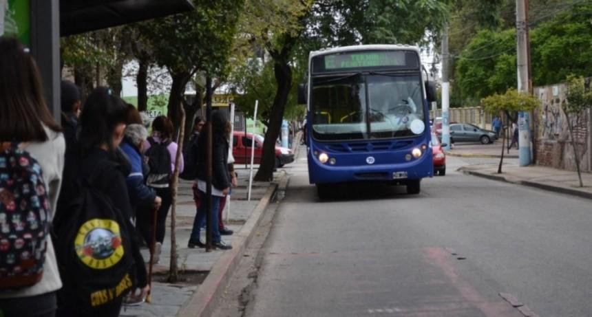 Se levantó el paro: mañana el servicio de Transpuntano será normal