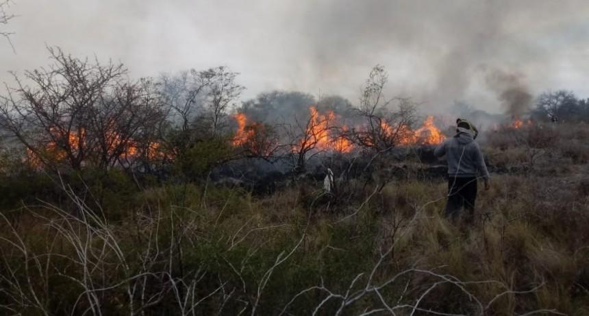 San Luis: Bomberos sofocaron dos incendios de malezas y uno estructural