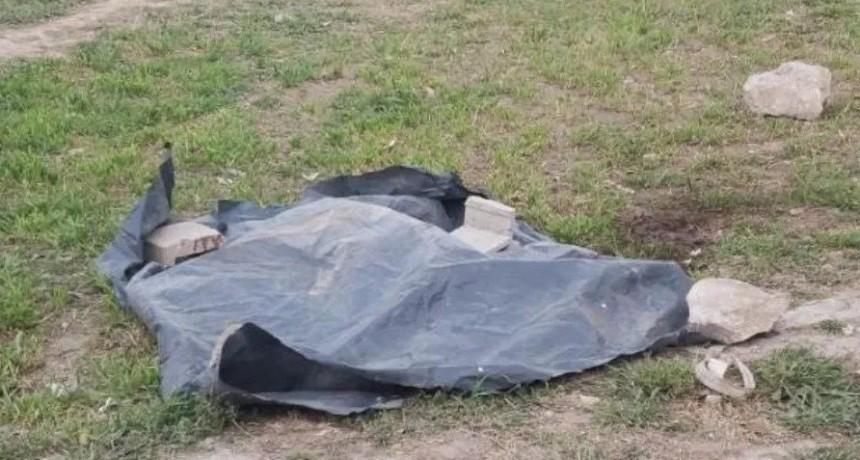 Vecinos mataron a golpes y puñaladas a un dogo que atacó a cuatro personas