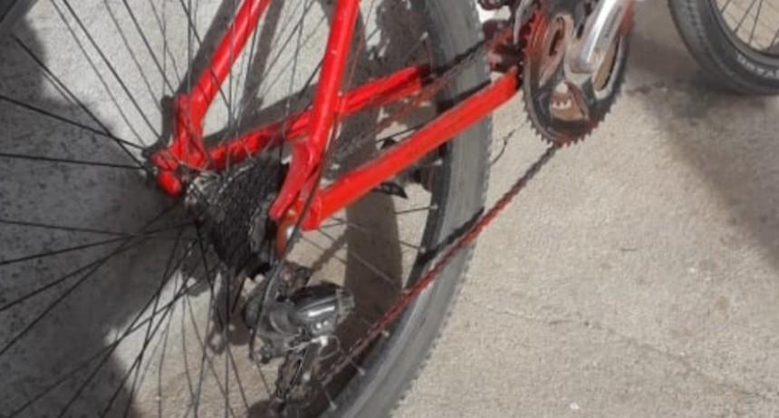 Quines: policías de Investigaciones recuperaron una costosa bicicleta