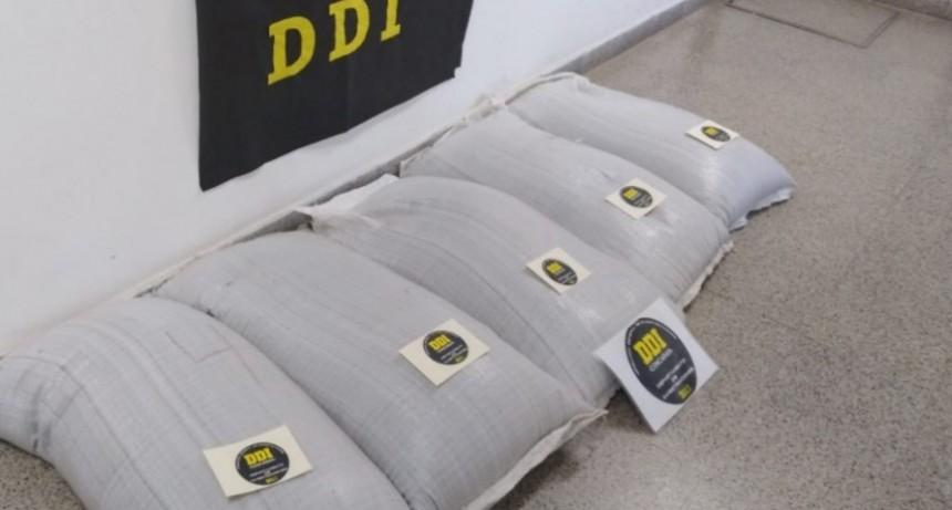 Concarán: Recuperan bolsas con semillas que habían sido robadas