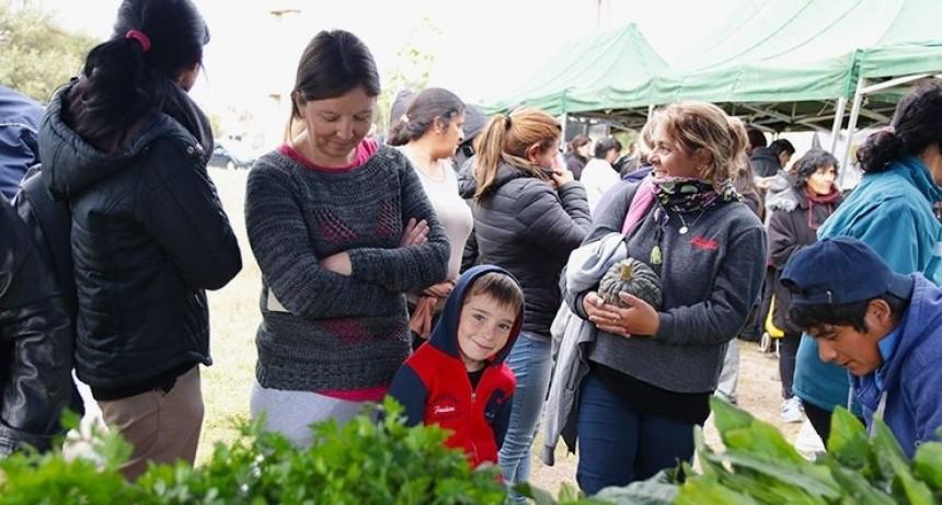 Los productos de Sol Puntano llegan este miércoles al Parque La Cerámica