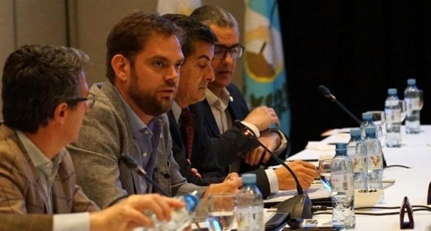 """""""En el país la obra pública está paralizada hace un año, sólo San Luis continúa adelante"""": Tomasevich"""