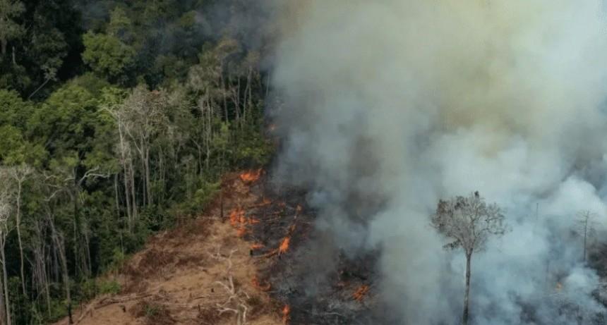 Amazonas: Argentina enviará ayuda a Brasil y Bolivia para combatir incendios