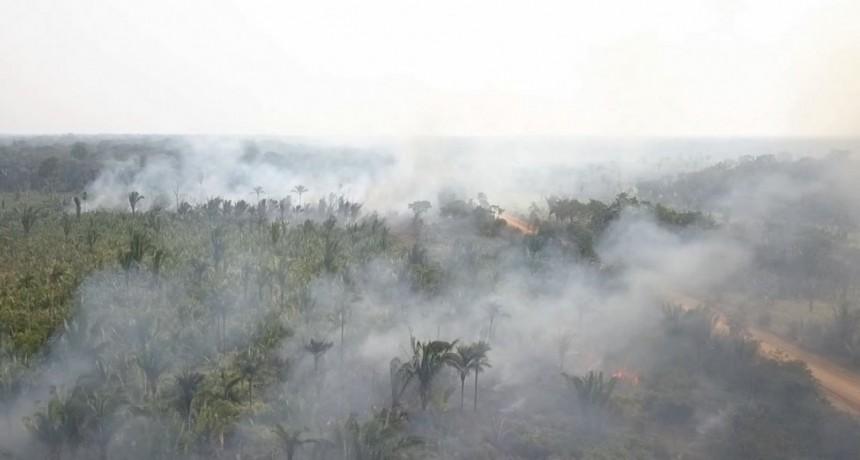 El humo de los incendios en el Amazonas podría llegar a San Luis