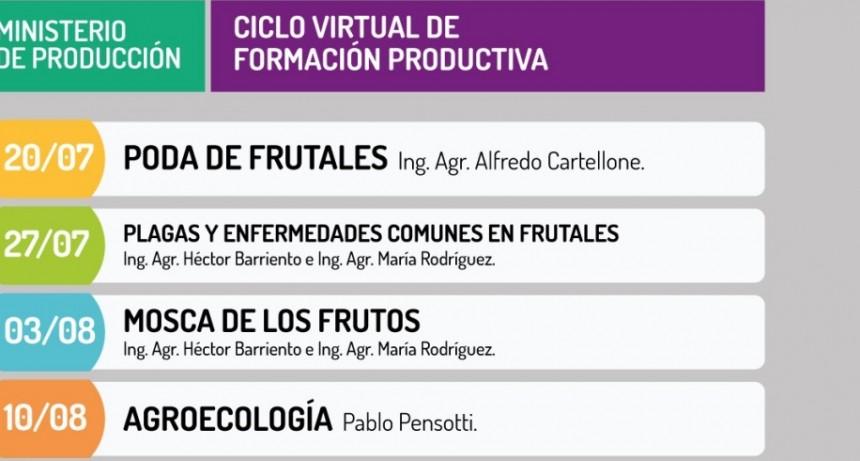 Este martes se dicta la quinta charla virtual para pequeños y medianos productores