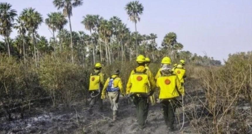 Por los incendios forestales declararon la emergencia ambiental en Paraguay