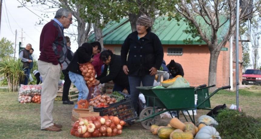 """""""Sol Puntano"""" abre sus puertas para una nueva feria de carnes y verduras este jueves"""