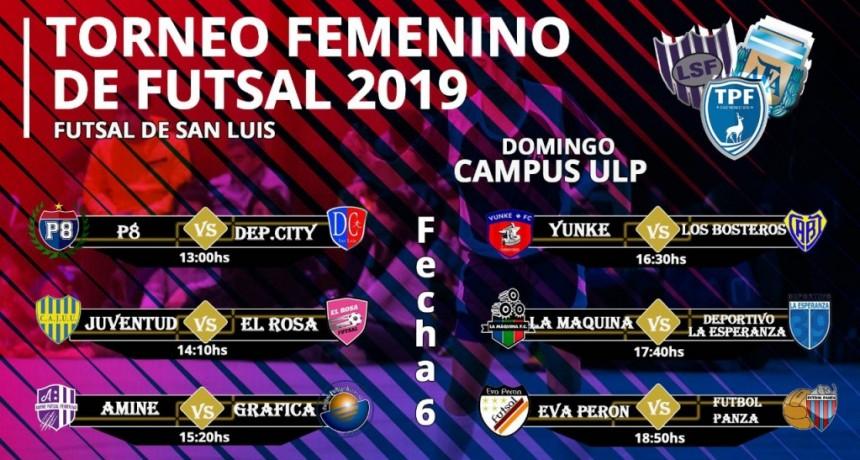 Mañana inicia la sexta fecha del Torneo Clausura de Futsal