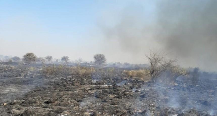 San Luis: Bomberos combatieron varios incendios forestales y uno en una casa