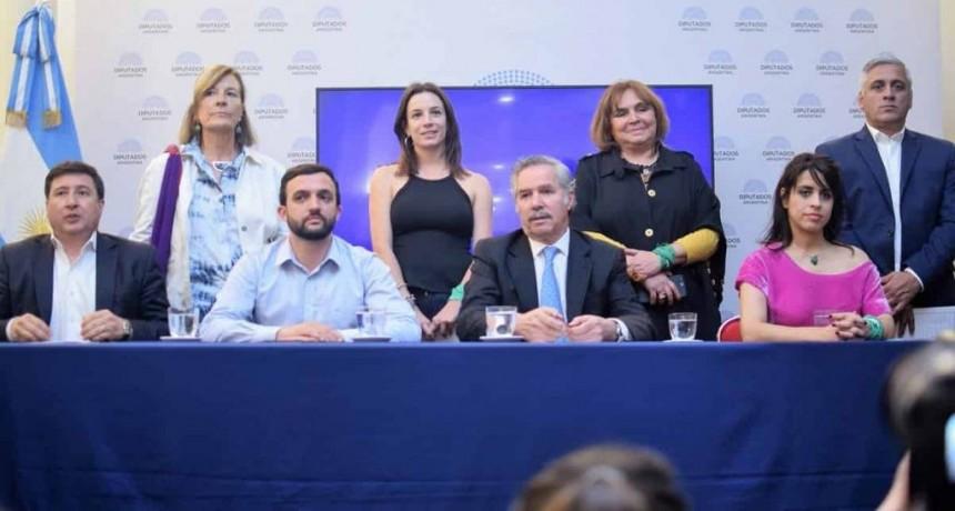 """Red x Argentina: """"Estamos en contra de este presupuesto que convalida el acuerdo con el FMI"""""""