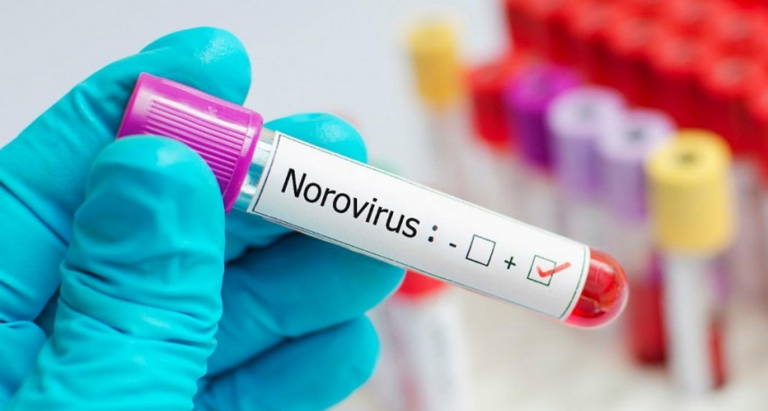 Emitieron un informe sobre casos de Norovirus registrados en Luján en septiembre