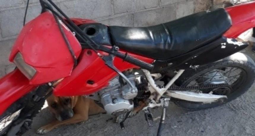 San Luis: detuvieron a un chico de 14 años que robó una moto