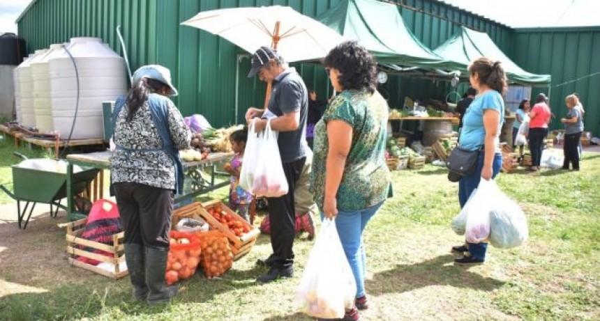 Verduras, cortes de carne y productos elaborados, las opciones de este jueves en Sol Puntano