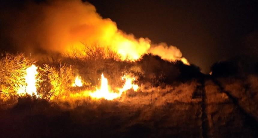 Juan Llerena: bomberos sofocaron un incendio forestal