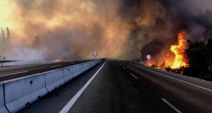 Emiten alerta roja por distintos incendios forestales en Chile
