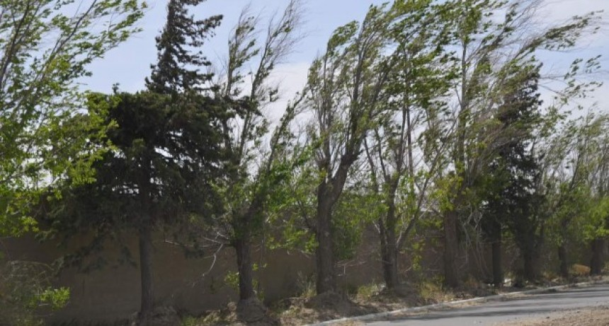 En San Luis, Villa Mercedes y alrededores, las ráfagas superaron los 75 km/h