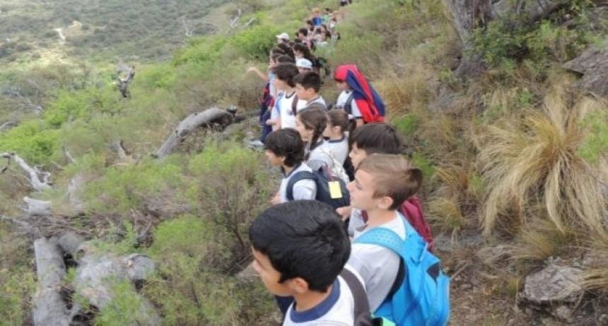 En el 2019 Mogote Bayo recibió a más de 1.800 estudiantes