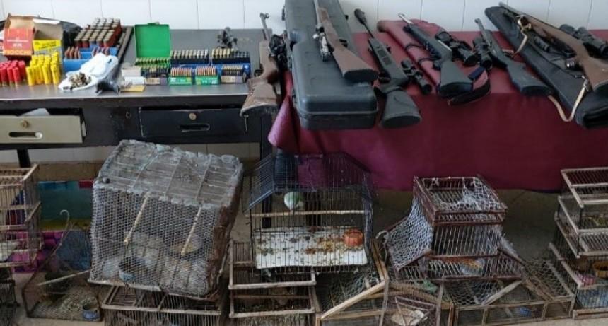 Quines: secuestraron armas de fuego, aves canoras y elementos para su captura