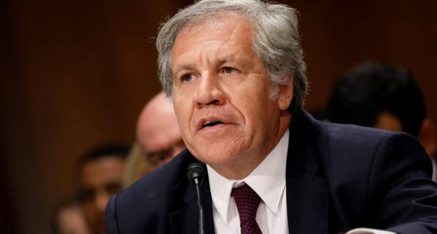 La OEA publicó su informe final sobre las elecciones en Bolivia