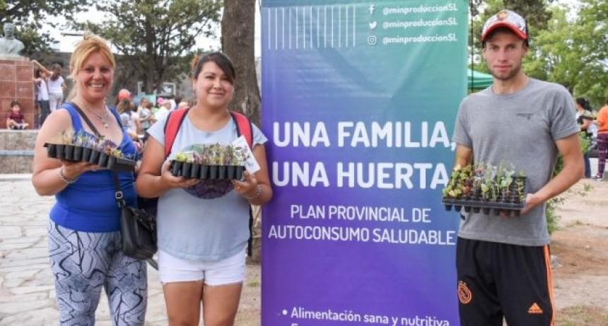 """""""Una Familia, Una Huerta"""": Las bandejas hortícolas llegan a San Francisco"""