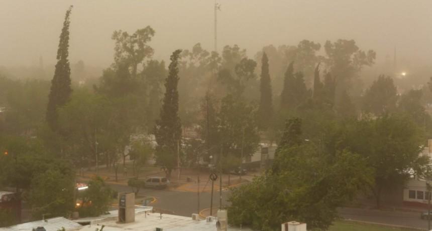 El temporal en Mendoza causó caída de árboles y dos personas murieron