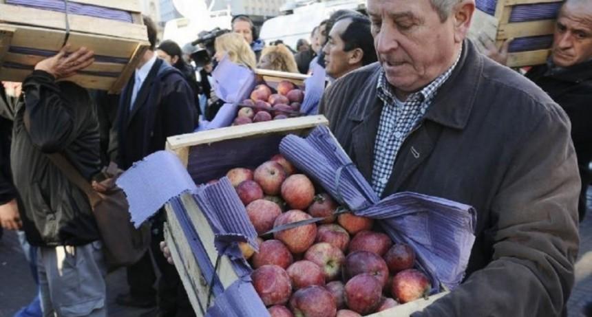 Productores de peras, manzanas y cítricos realizarán un frutazo en Buenos Aires