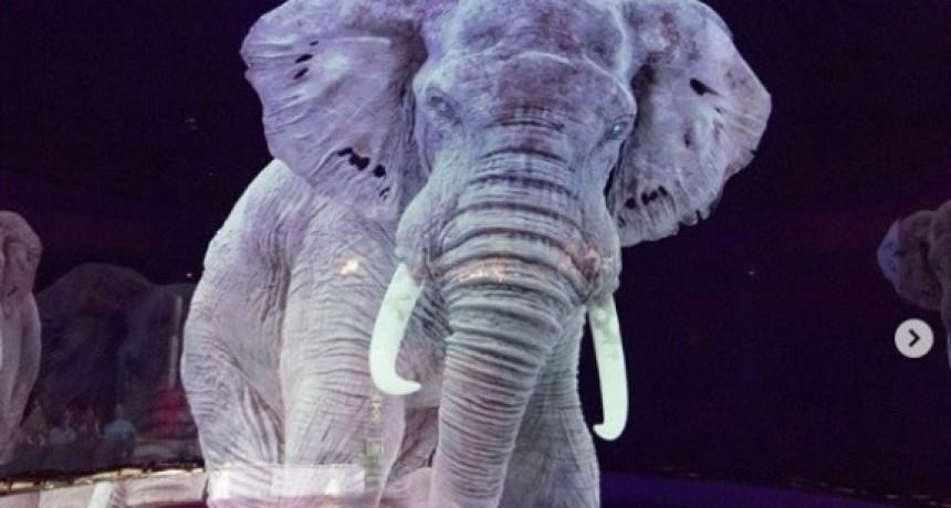 El circo que usa hologramas en vez de animales