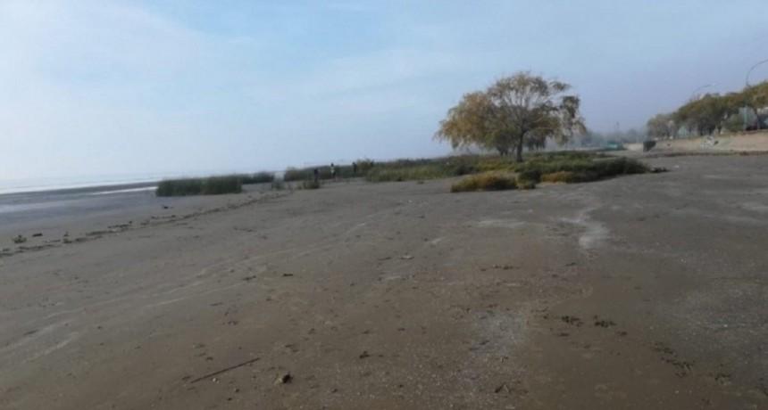 Los restos encontrados en Punta Lara eran de una nena de 5 o 6 años
