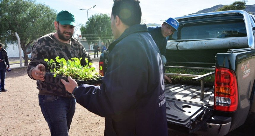 """""""Una familia, una huerta"""": comenzó la entrega de plantines en los barrios de la ciudad de San Luis"""