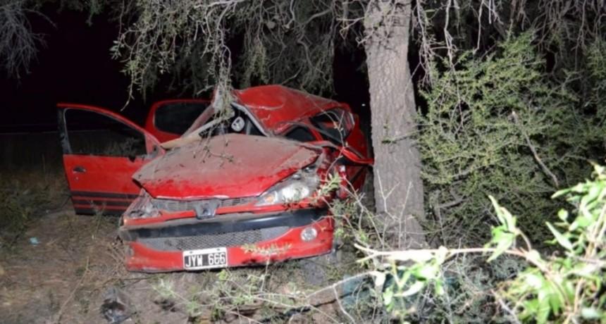 Quines: un turista chocó contra un árbol y se encuentra grave