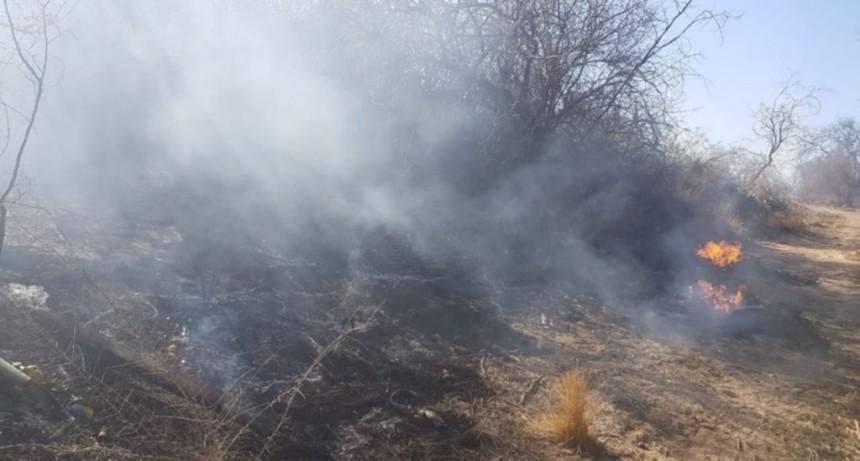 Bomberos extinguieron un incendio en el suroeste de la ciudad