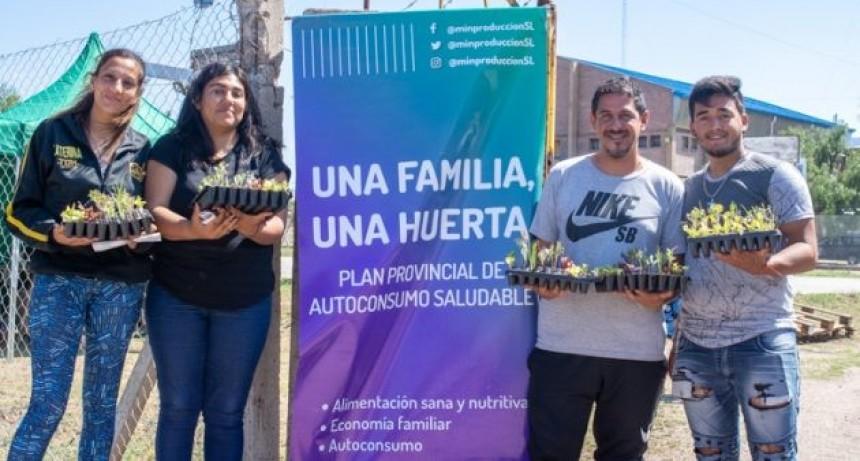 Cientos de nuevas familias puntanas comenzaron a armar su huerta