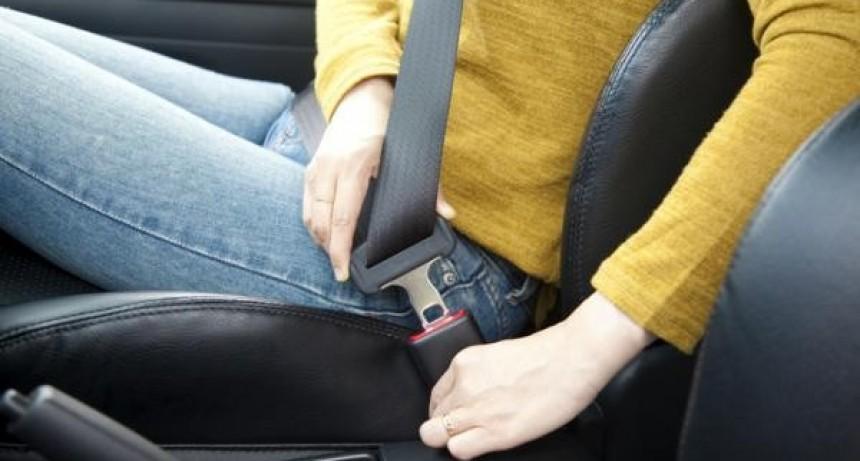 En la provincia, el 40 % de las infracciones de tránsito son por no usar el cinturón de seguridad